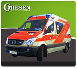 Rescue Ambulance - Panel Van Type